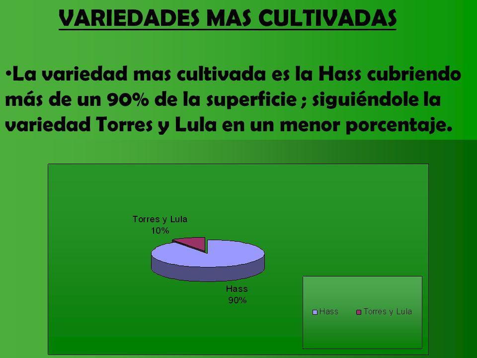 VARIEDADES MAS CULTIVADAS