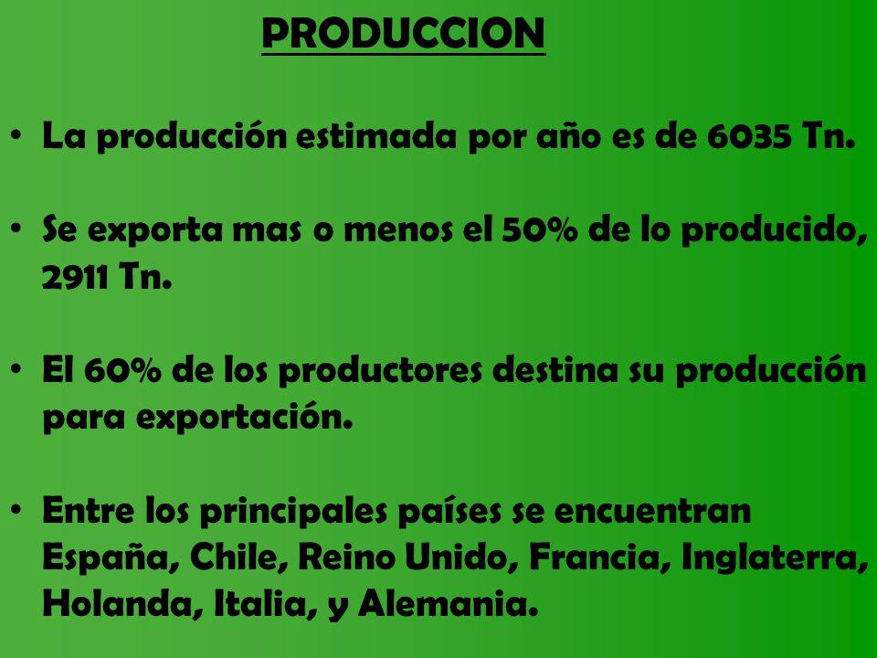 PRODUCCION La producción estimada por año es de 6035 Tn.