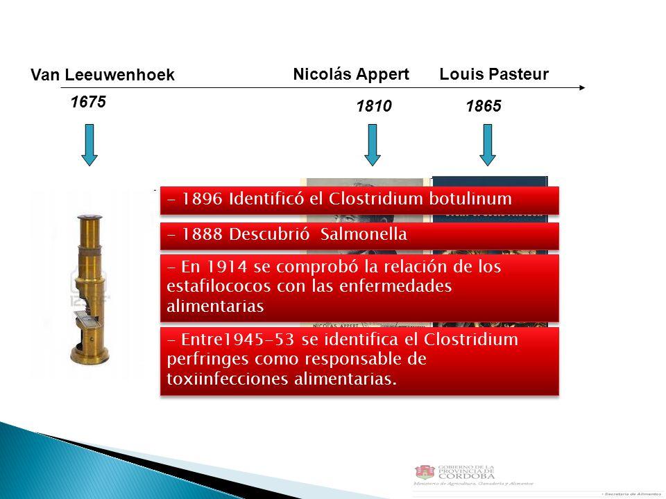 Van Leeuwenhoek Nicolás Appert. Louis Pasteur. 1675. 1810. 1865. - 1896 Identificó el Clostridium botulinum.
