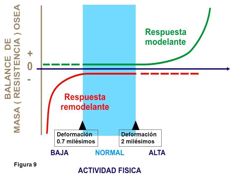 Deformación 0.7 milésimos Deformación 2 milésimos Figura 9