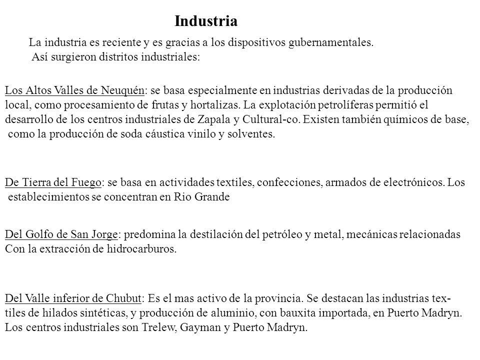 Industria La industria es reciente y es gracias a los dispositivos gubernamentales. Así surgieron distritos industriales: