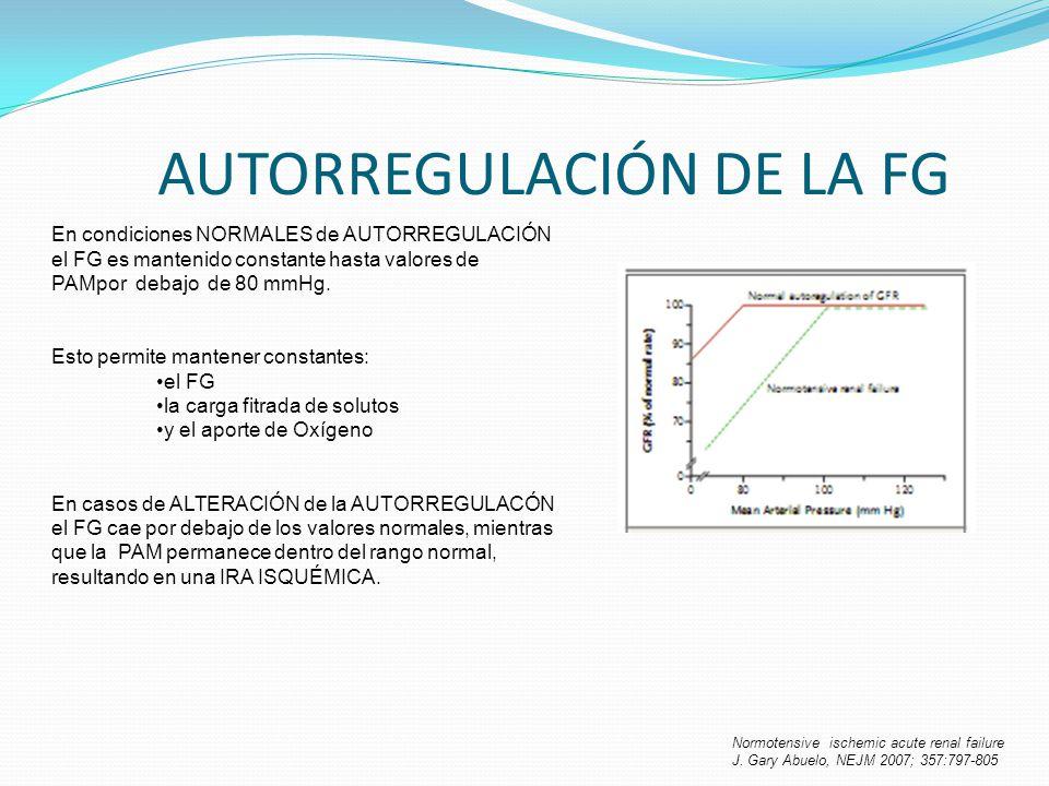 AUTORREGULACIÓN DE LA FG