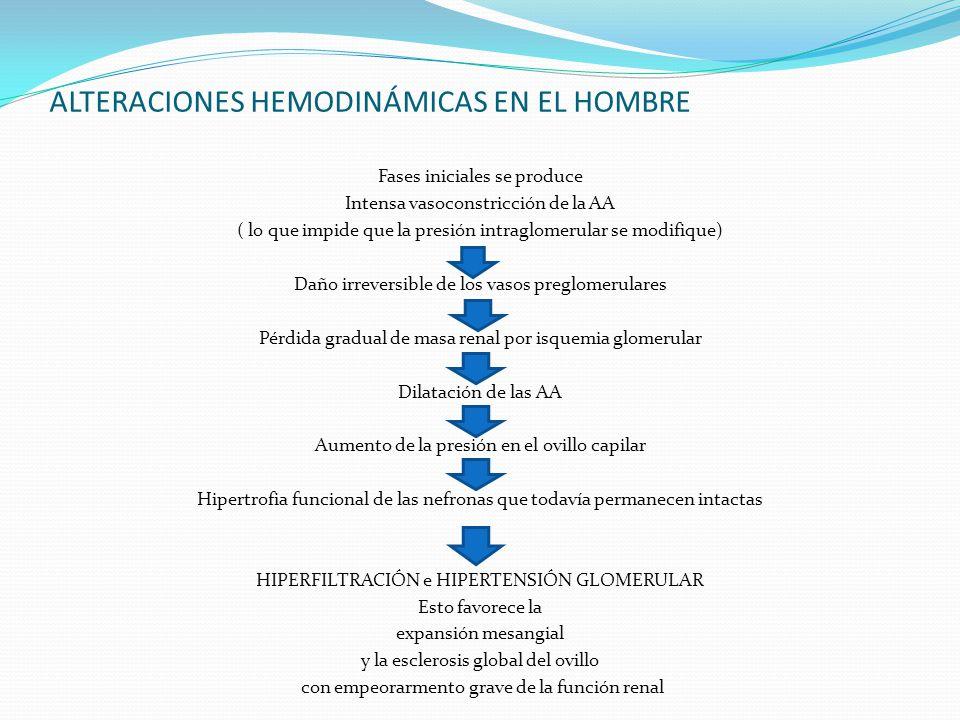 ALTERACIONES HEMODINÁMICAS EN EL HOMBRE