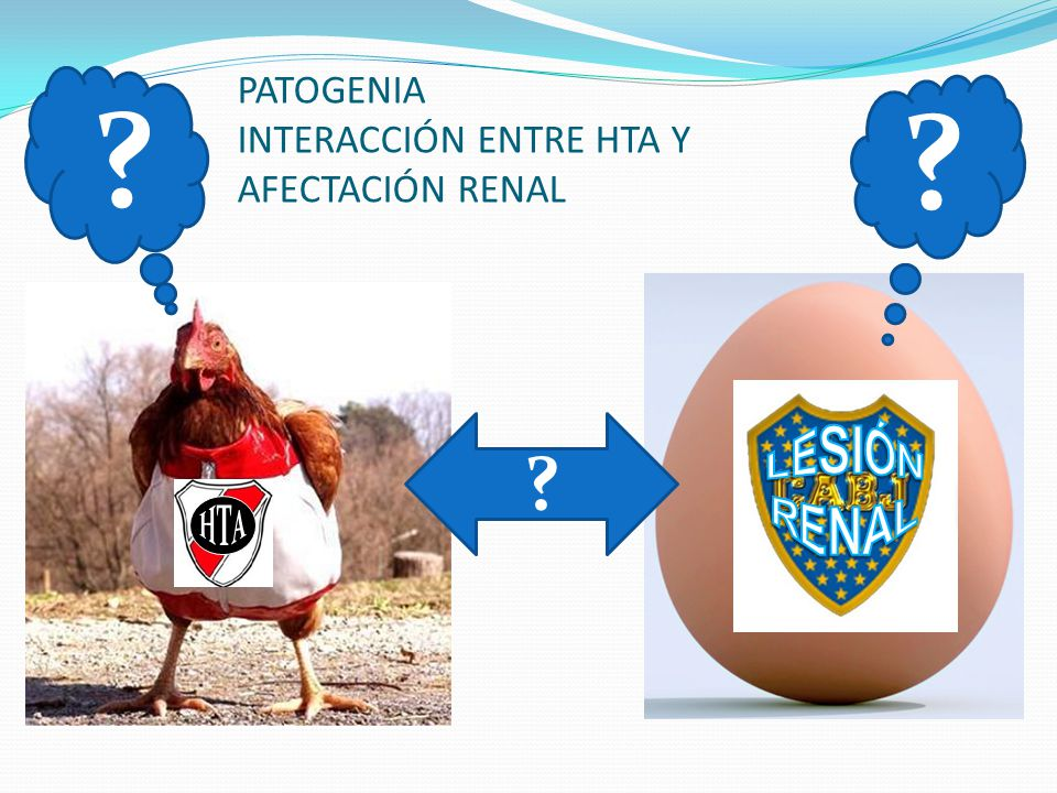 PATOGENIA INTERACCIÓN ENTRE HTA Y AFECTACIÓN RENAL