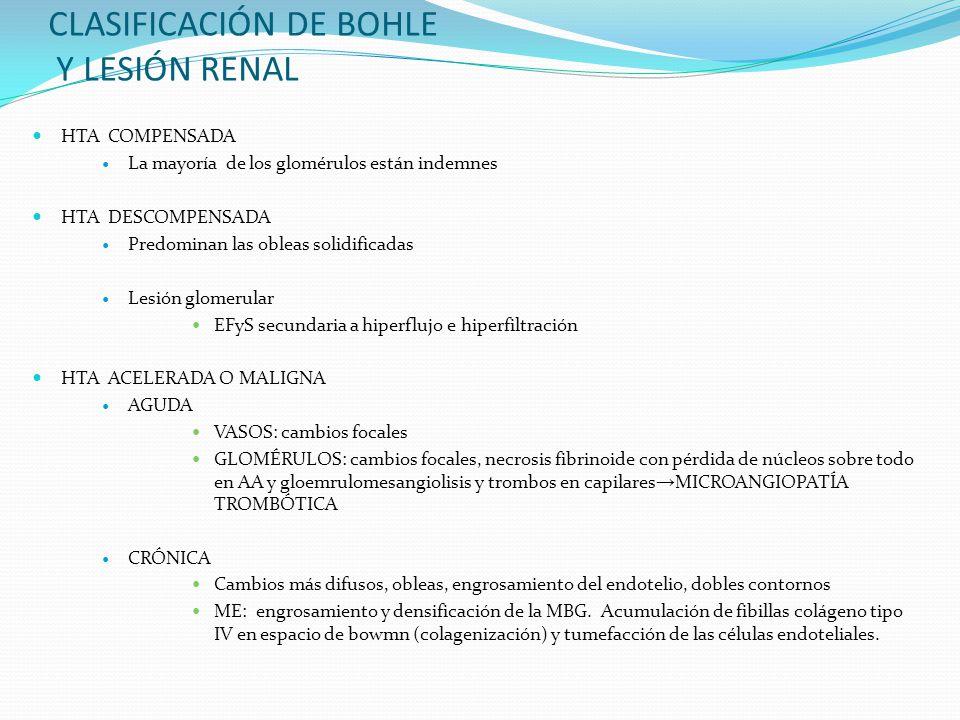 CLASIFICACIÓN DE BOHLE Y LESIÓN RENAL