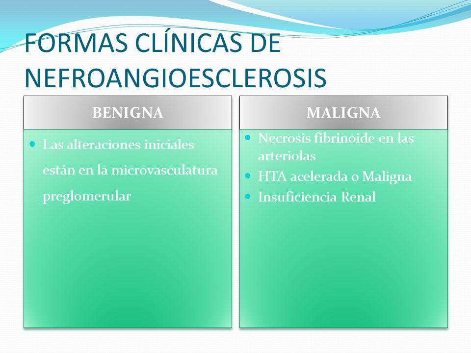 FORMAS CLÍNICAS DE NEFROANGIOESCLEROSIS
