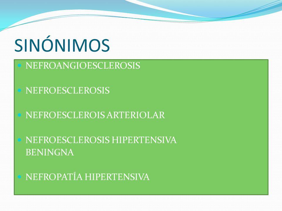 SINÓNIMOS NEFROANGIOESCLEROSIS NEFROESCLEROSIS