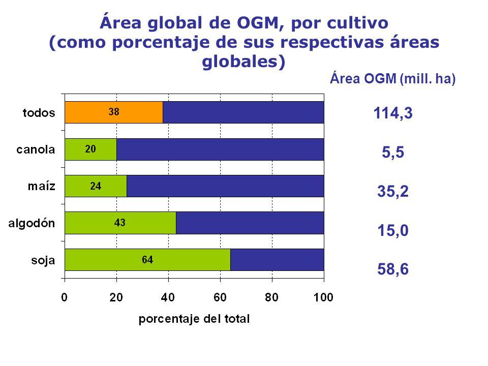 Área global de OGM, por cultivo