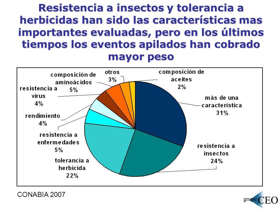 Resistencia a insectos y tolerancia a herbicidas han sido las características mas importantes evaluadas, pero en los últimos tiempos los eventos apilados han cobrado mayor peso