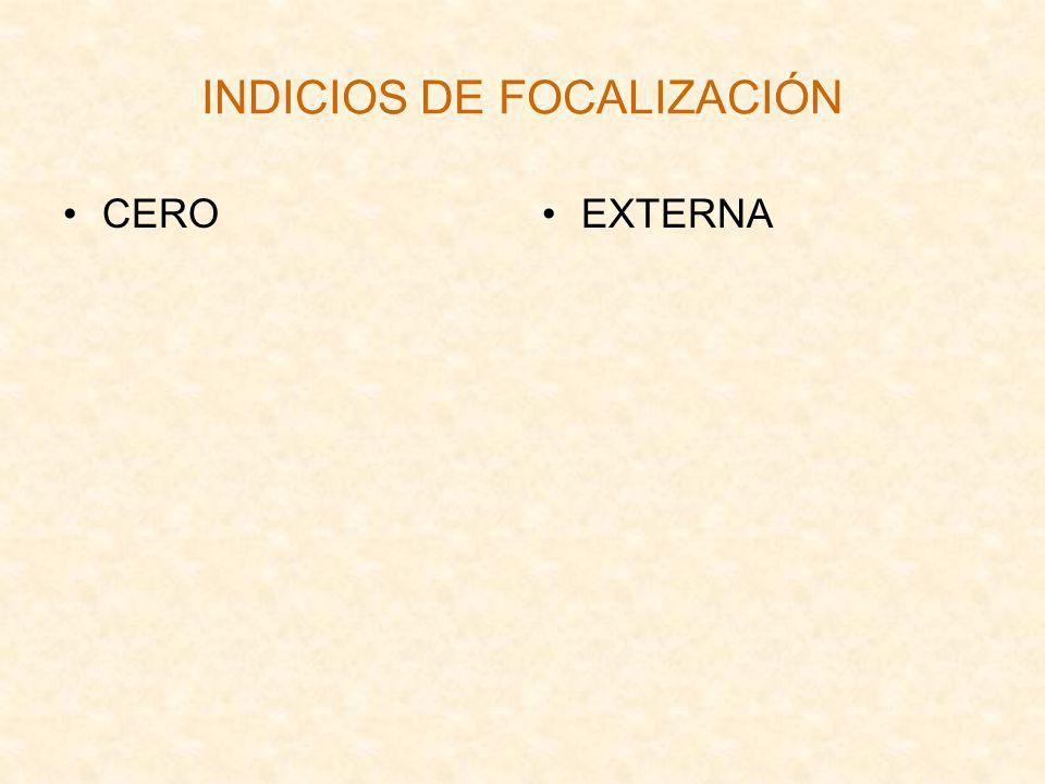 INDICIOS DE FOCALIZACIÓN