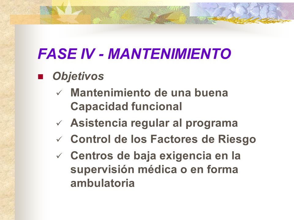FASE IV - MANTENIMIENTO