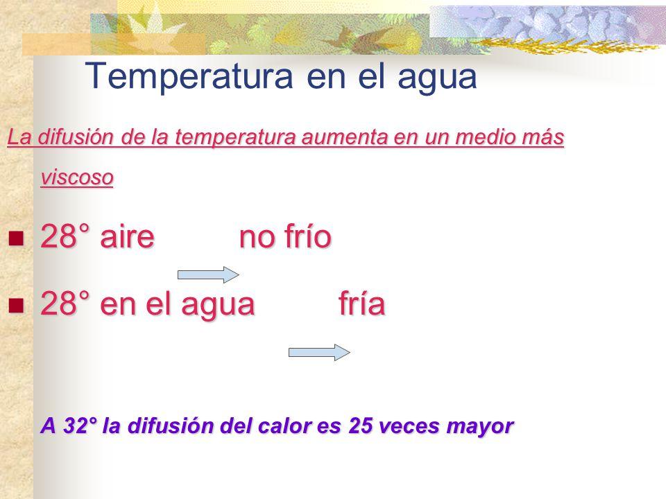 Temperatura en el agua 28° aire no frío 28° en el agua fría