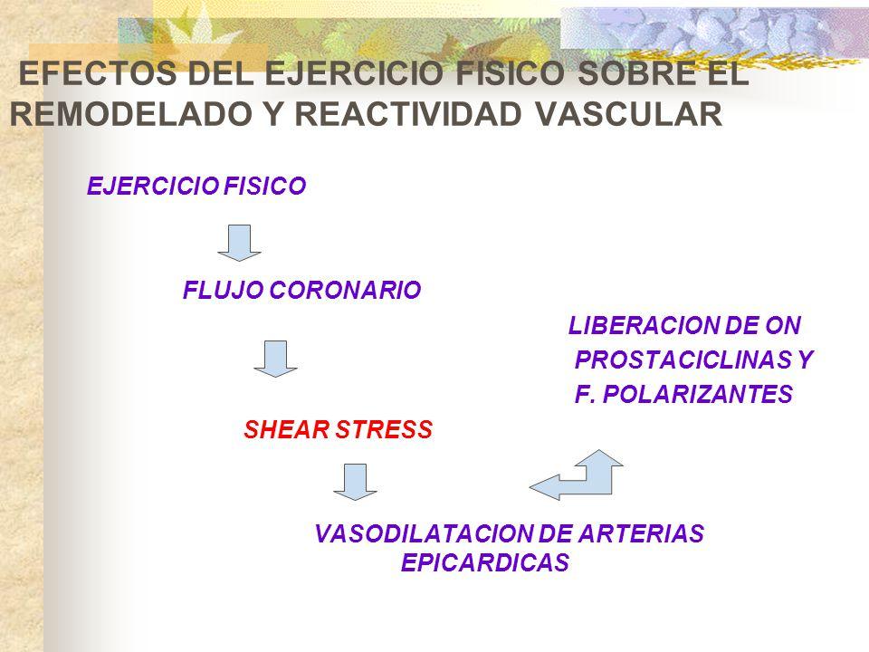 EFECTOS DEL EJERCICIO FISICO SOBRE EL REMODELADO Y REACTIVIDAD VASCULAR