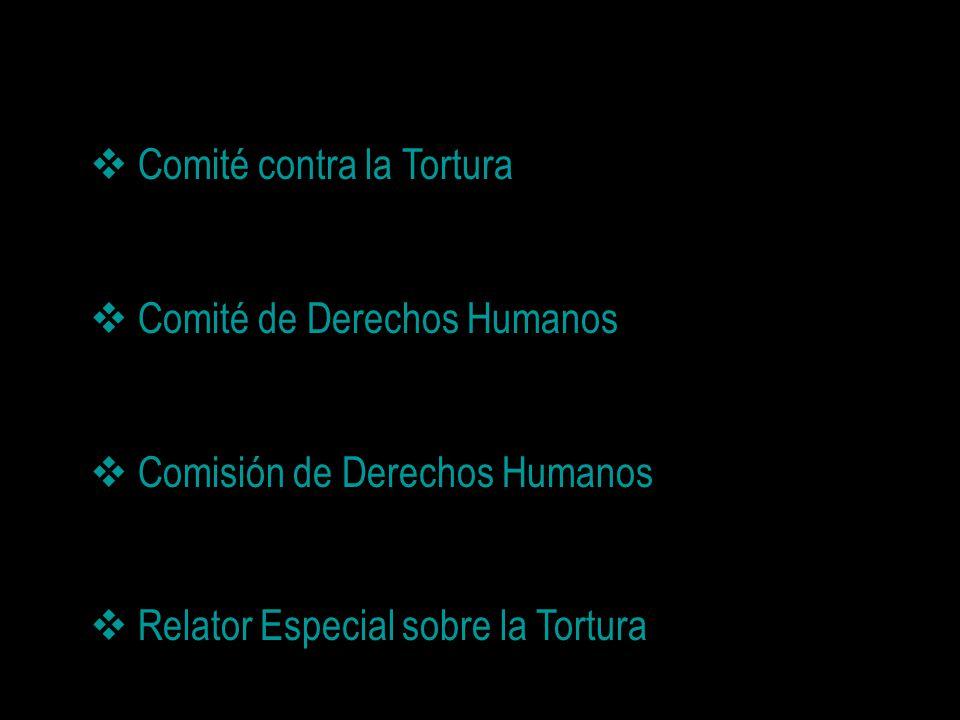 Comité contra la Tortura