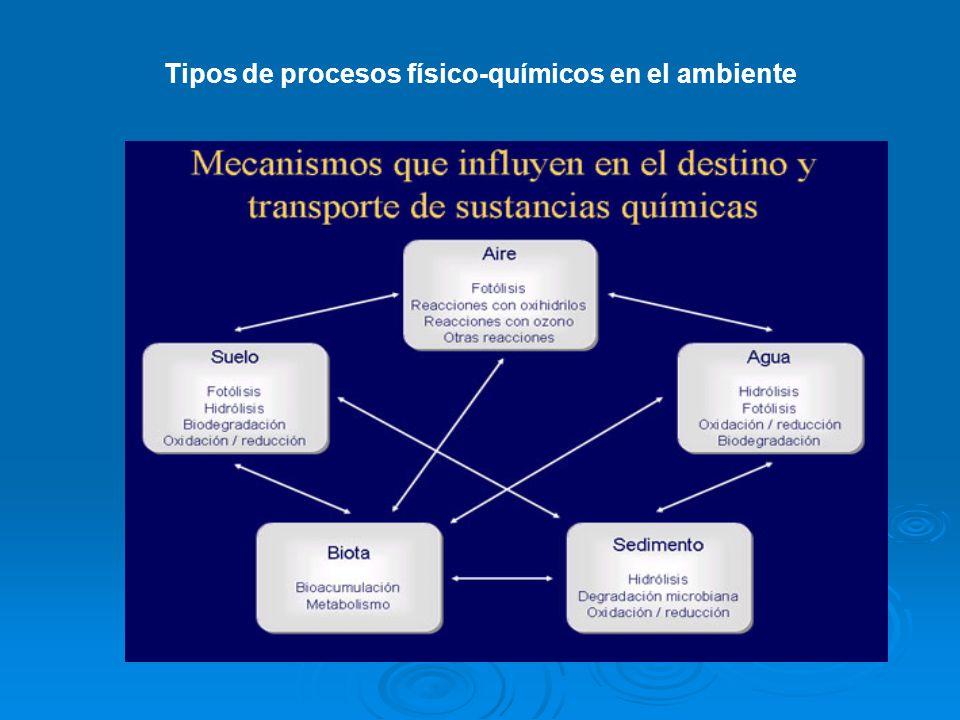 Tipos de procesos físico-químicos en el ambiente