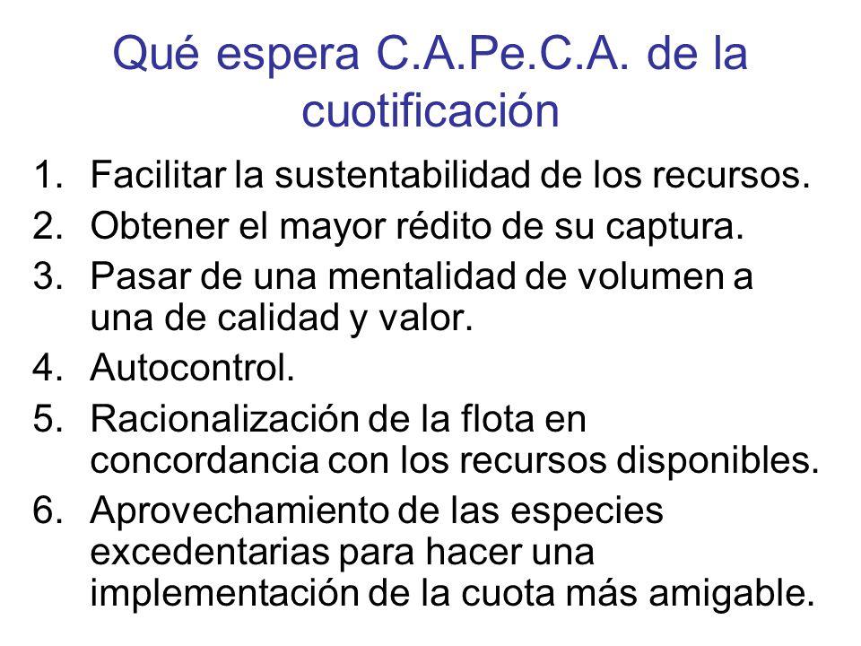 Qué espera C.A.Pe.C.A. de la cuotificación