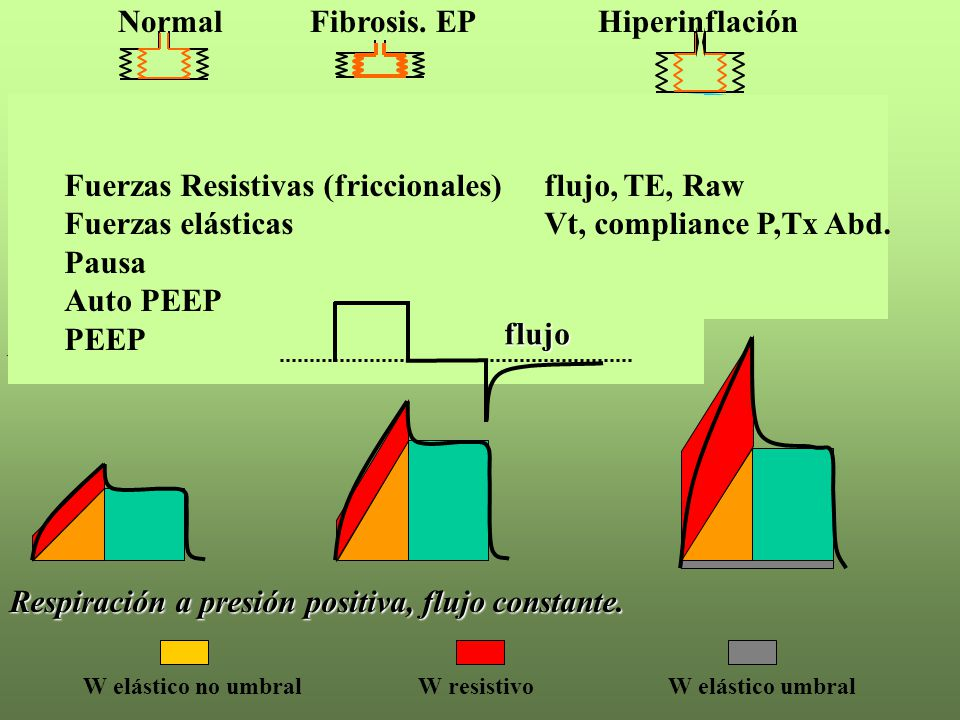 Normal Fibrosis. EP Hiperinflación