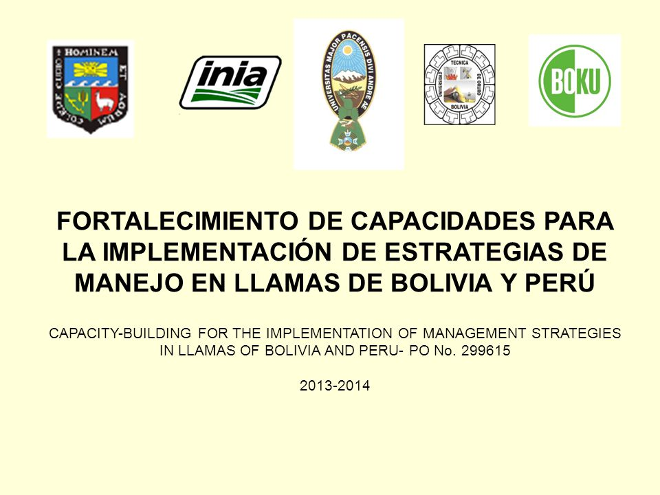 FORTALECIMIENTO DE CAPACIDADES PARA LA IMPLEMENTACIÓN DE ESTRATEGIAS DE MANEJO EN LLAMAS DE BOLIVIA Y PERÚ CAPACITY-BUILDING FOR THE IMPLEMENTATION OF MANAGEMENT STRATEGIES IN LLAMAS OF BOLIVIA AND PERU- PO No. 299615