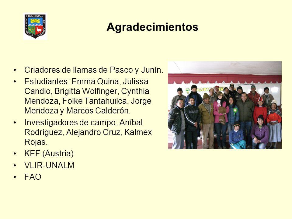Agradecimientos Criadores de llamas de Pasco y Junín.