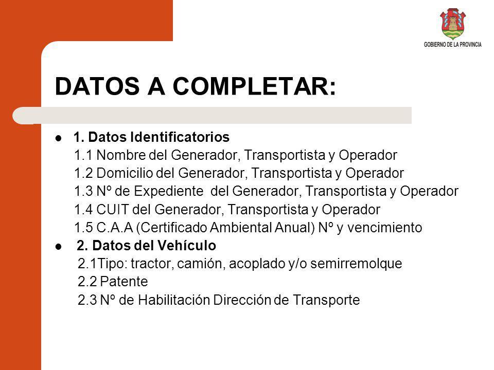 DATOS A COMPLETAR: 1. Datos Identificatorios