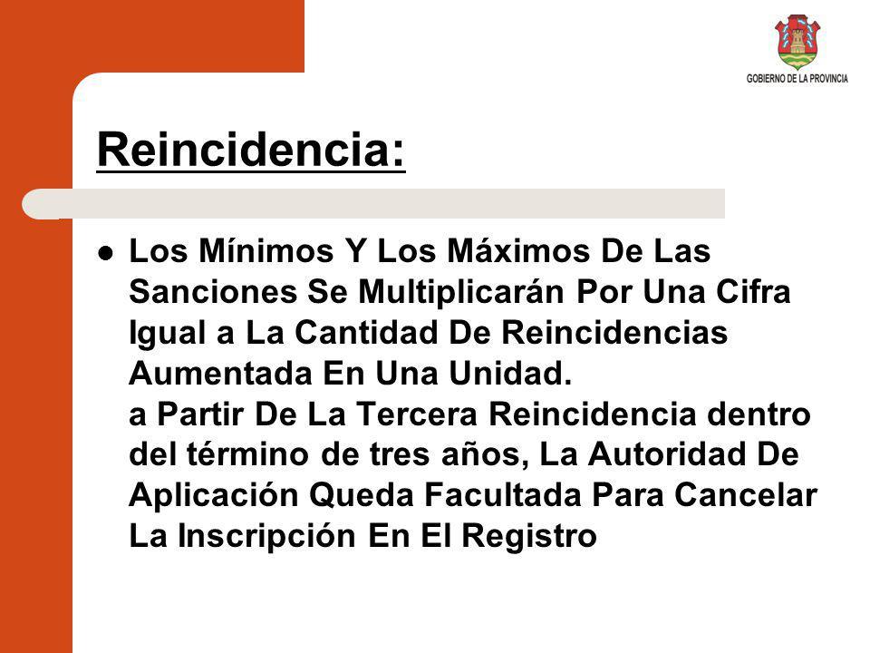 Reincidencia:
