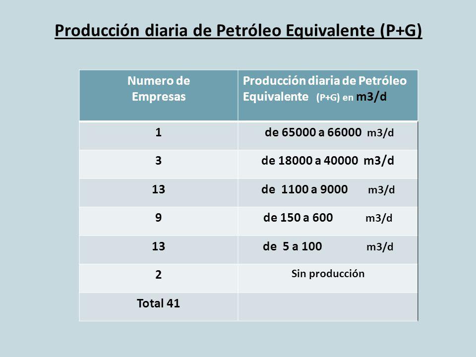 Producción diaria de Petróleo Equivalente (P+G)