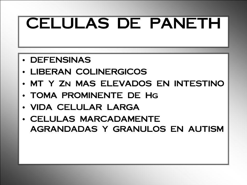 CELULAS DE PANETH DEFENSINAS LIBERAN COLINERGICOS