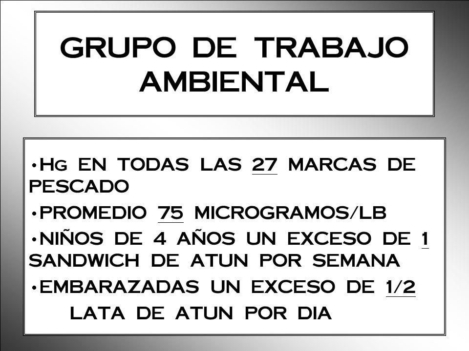 GRUPO DE TRABAJO AMBIENTAL