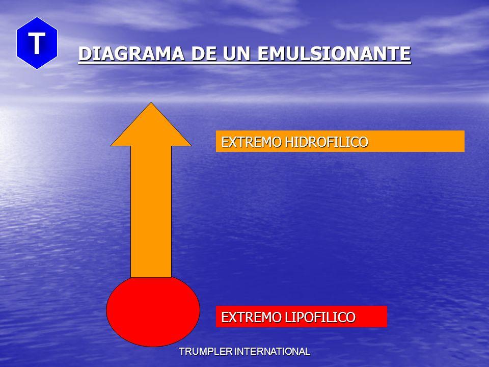 DIAGRAMA DE UN EMULSIONANTE