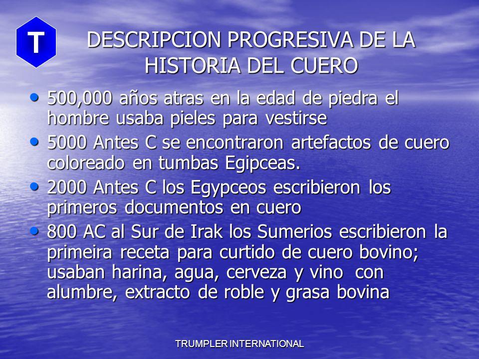 DESCRIPCION PROGRESIVA DE LA HISTORIA DEL CUERO