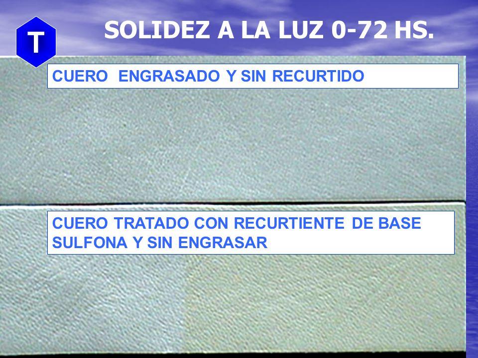 T SOLIDEZ A LA LUZ 0-72 HS. CUERO ENGRASADO Y SIN RECURTIDO