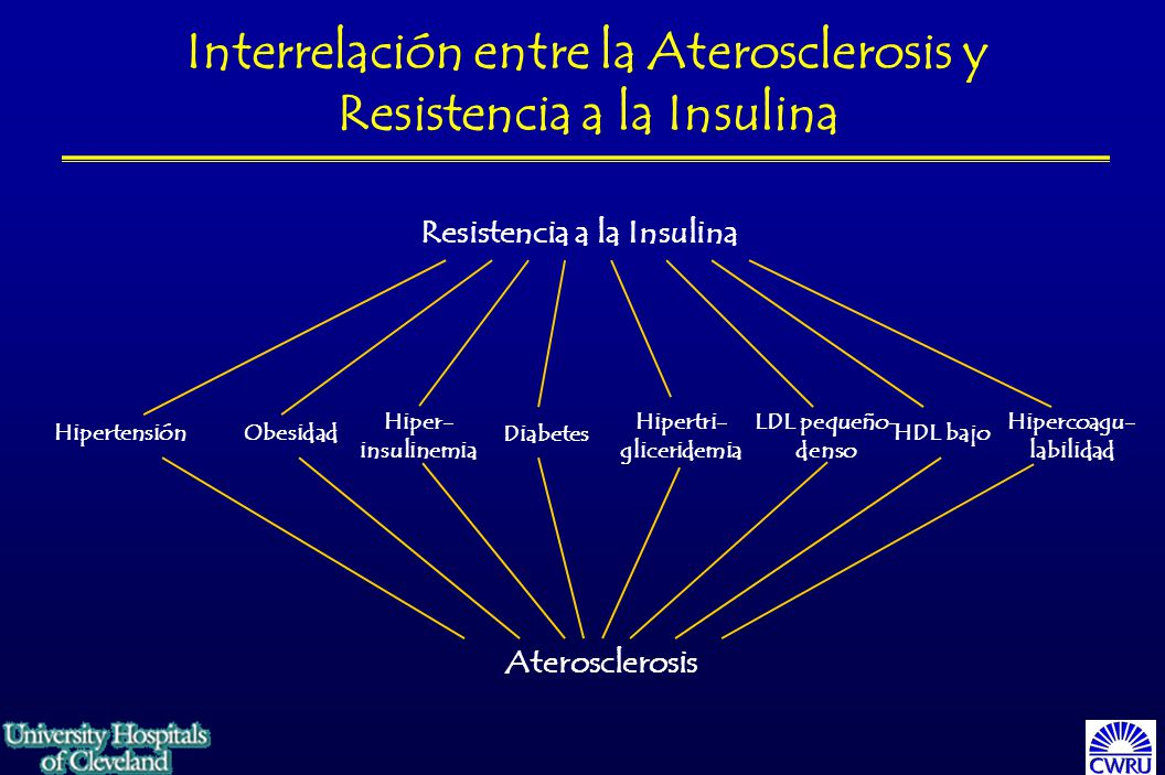 Interrelación entre la Aterosclerosis y Resistencia a la Insulina