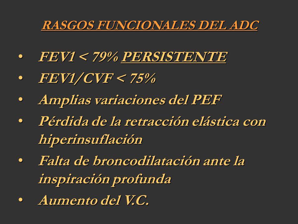 RASGOS FUNCIONALES DEL ADC