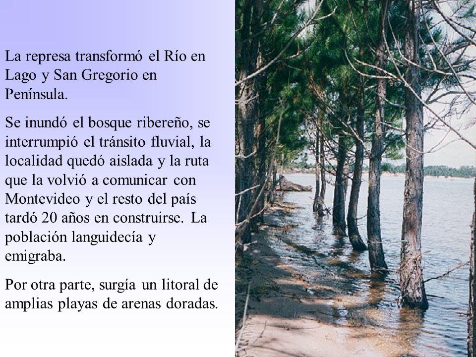 La represa transformó el Río en Lago y San Gregorio en Península.
