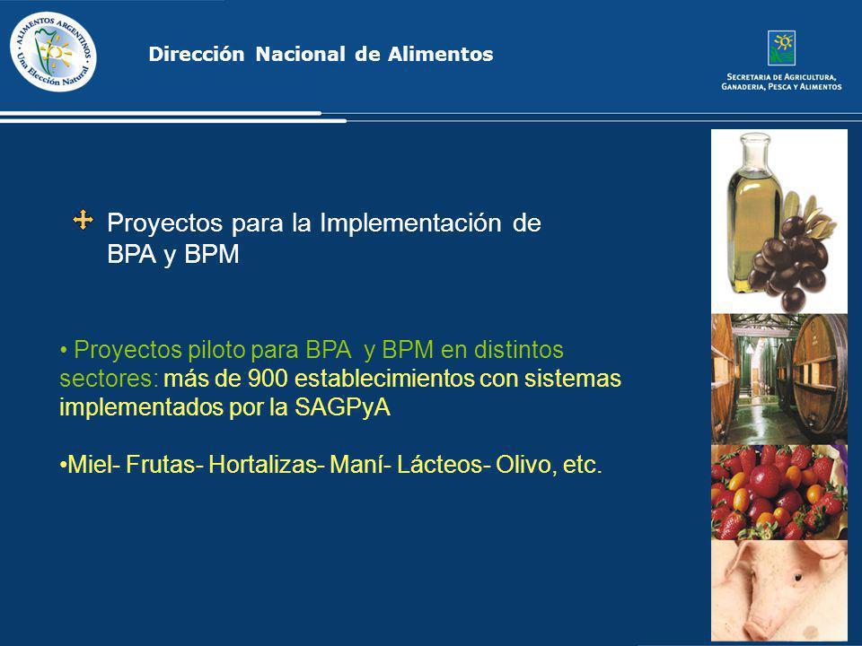 Proyectos para la Implementación de BPA y BPM