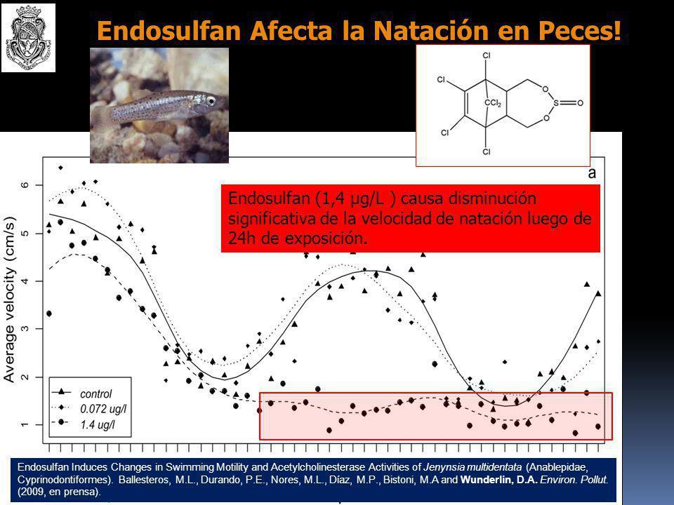 Endosulfan Afecta la Natación en Peces!