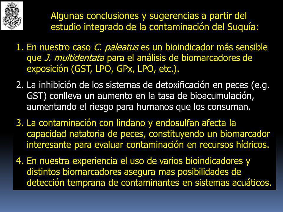 Algunas conclusiones y sugerencias a partir del estudio integrado de la contaminación del Suquía: