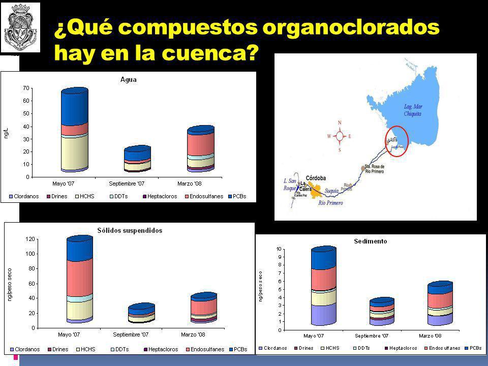 ¿Qué compuestos organoclorados hay en la cuenca