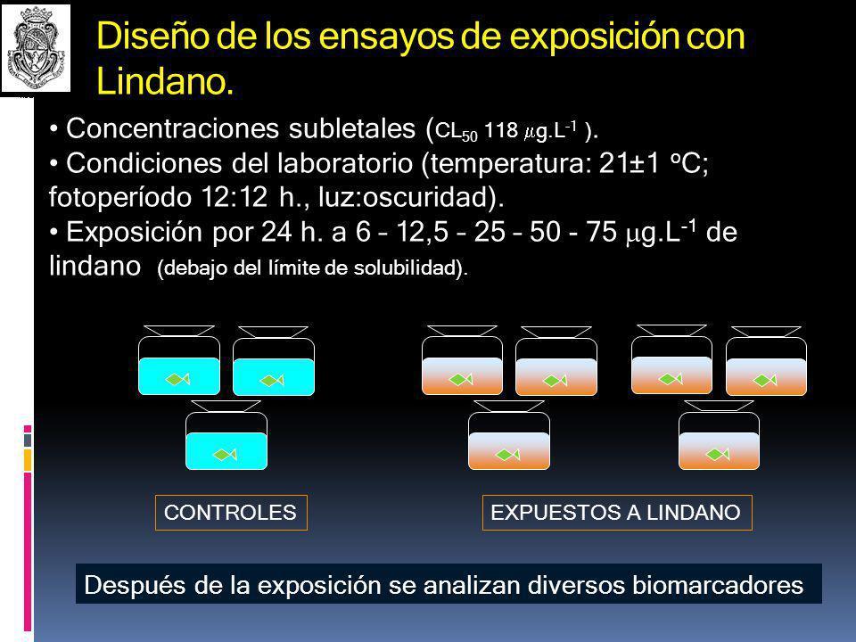 Diseño de los ensayos de exposición con Lindano.