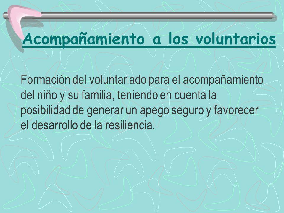 Acompañamiento a los voluntarios
