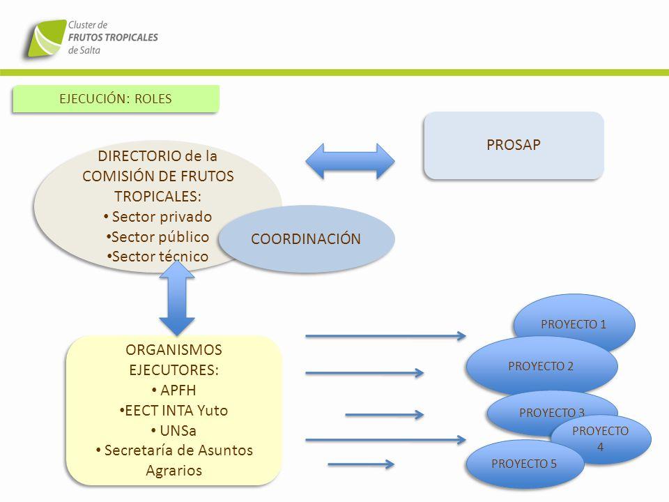 DIRECTORIO de la COMISIÓN DE FRUTOS TROPICALES: