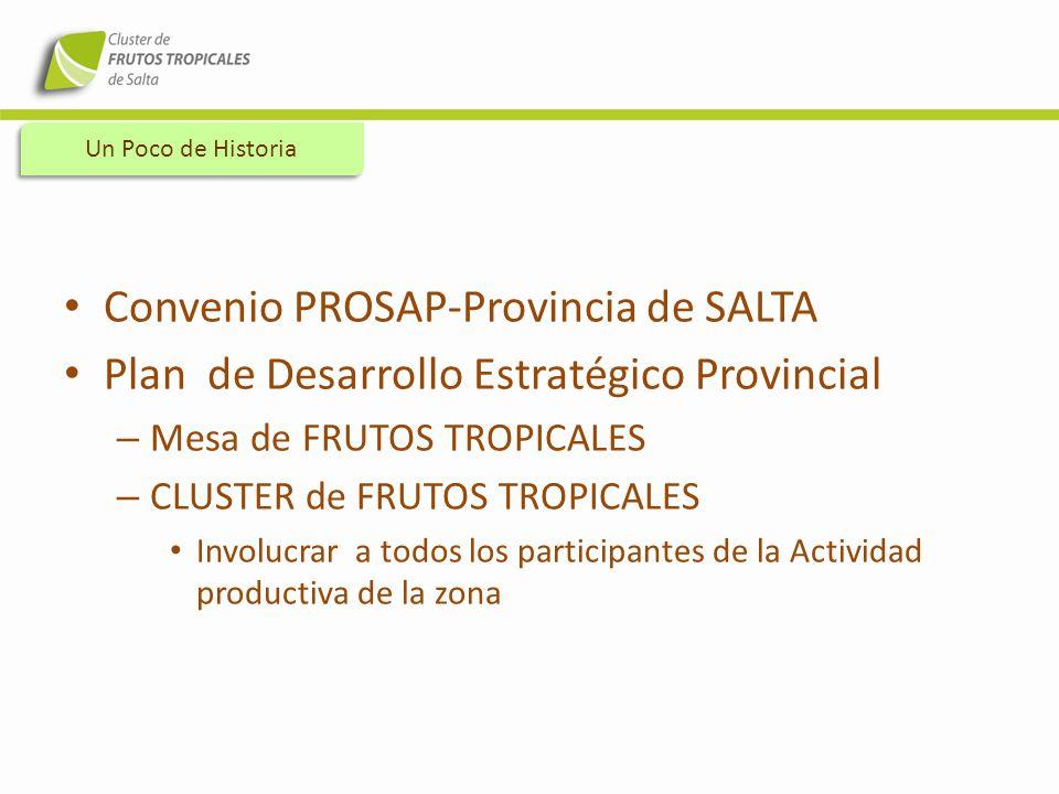 Convenio PROSAP-Provincia de SALTA