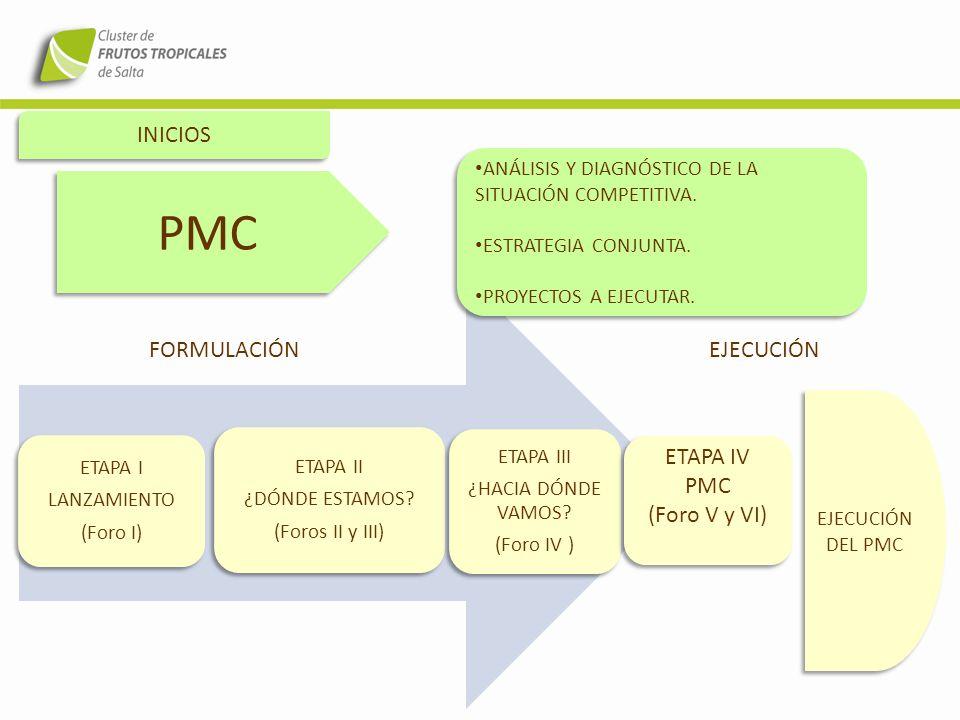 PMC INICIOS FORMULACIÓN EJECUCIÓN ETAPA IV PMC (Foro V y VI)