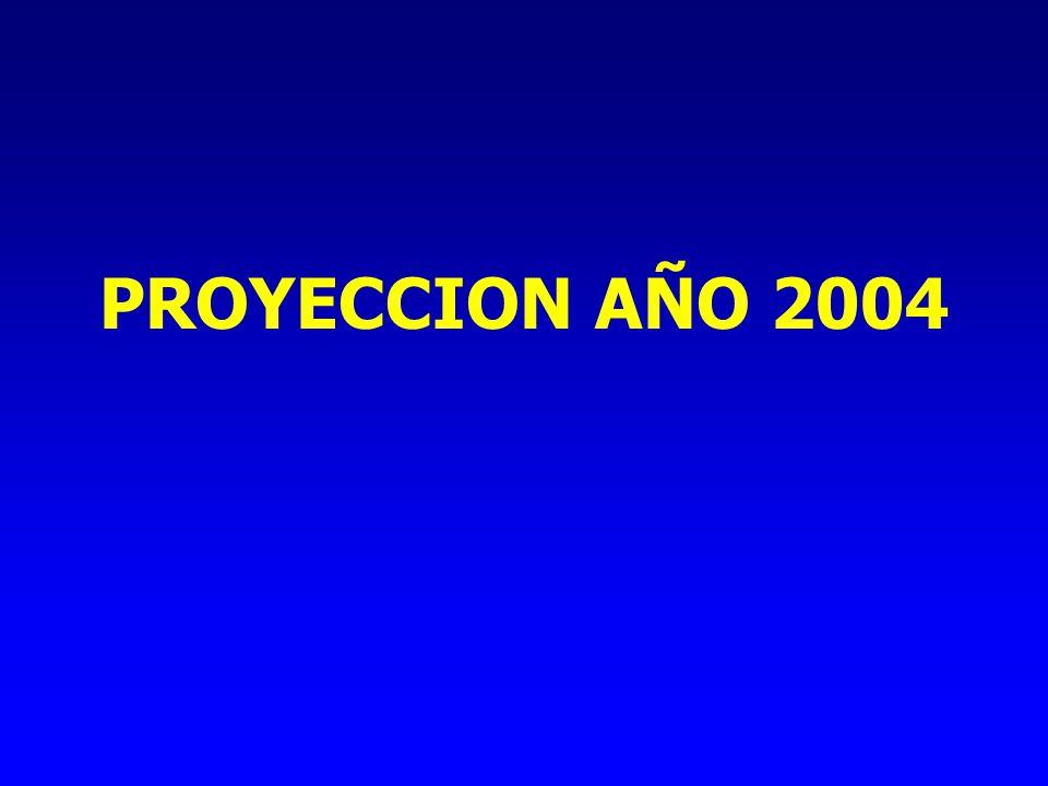 PROYECCION AÑO 2004