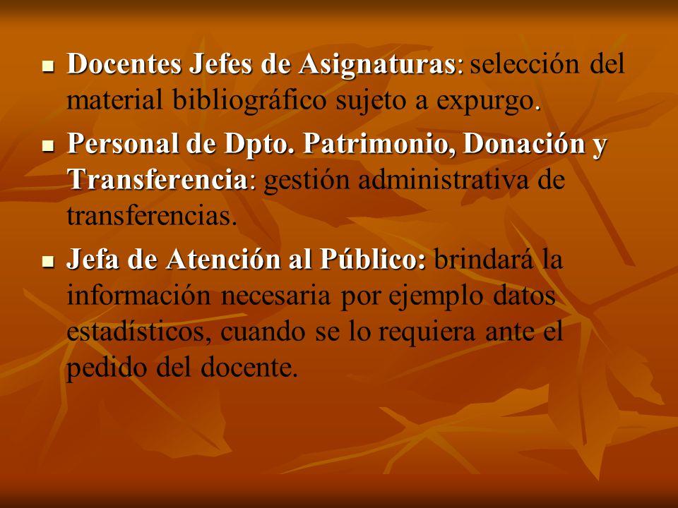 Docentes Jefes de Asignaturas: selección del material bibliográfico sujeto a expurgo.