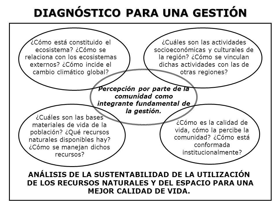 DIAGNÓSTICO PARA UNA GESTIÓN