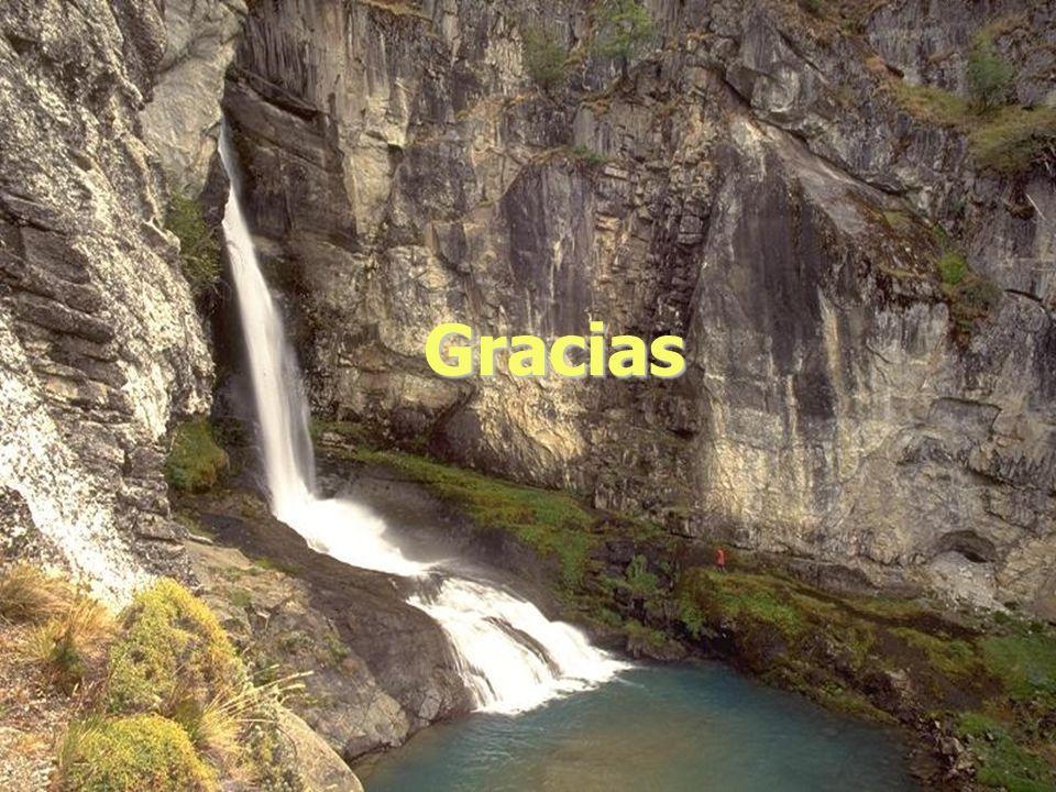 Gracias Lic. Andrea Jara 19 de agoato de 2004