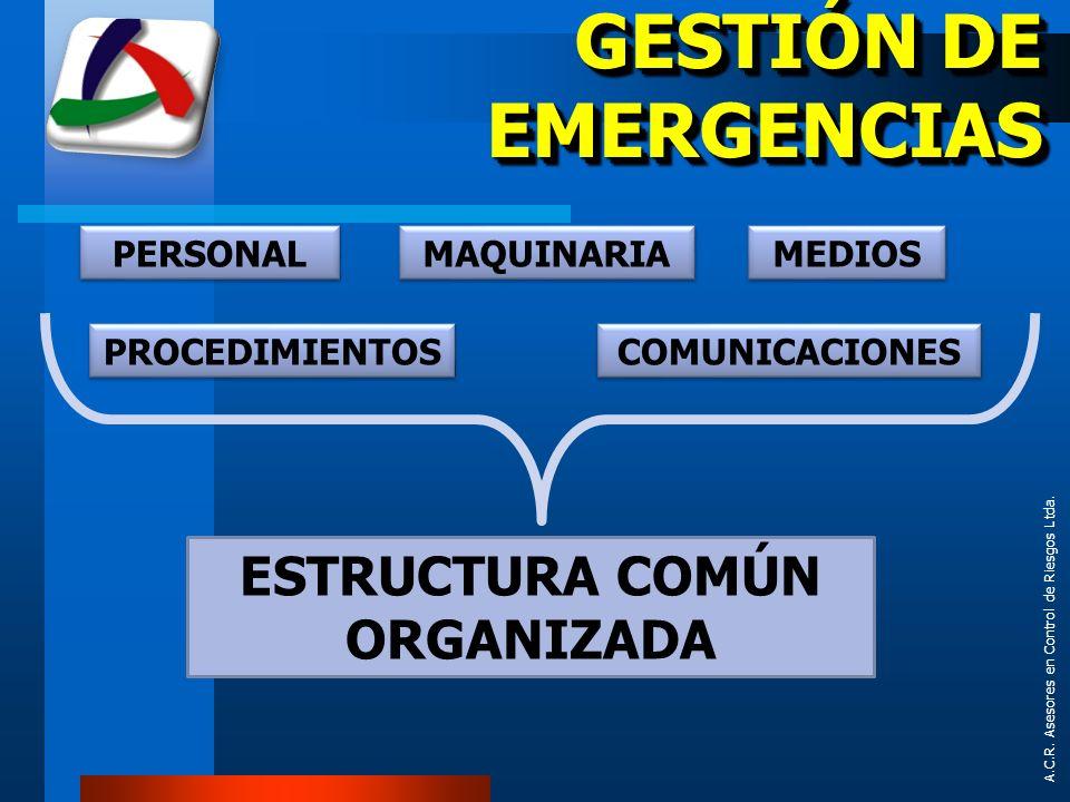 ESTRUCTURA COMÚN ORGANIZADA
