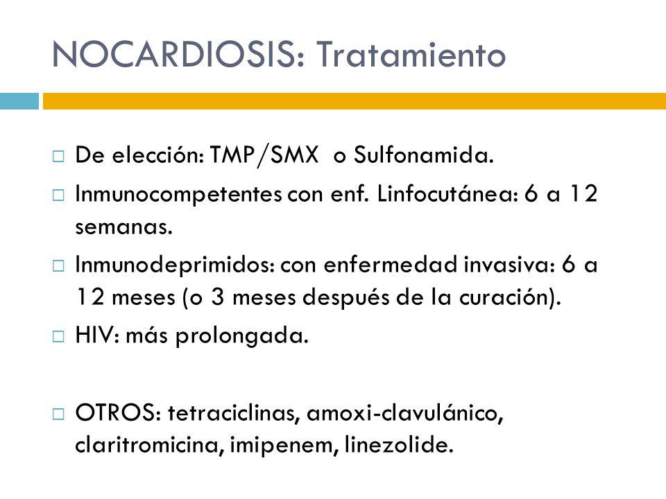 NOCARDIOSIS: Tratamiento