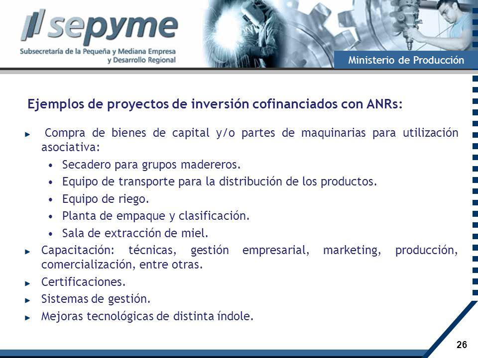 Ejemplos de proyectos de inversión cofinanciados con ANRs: